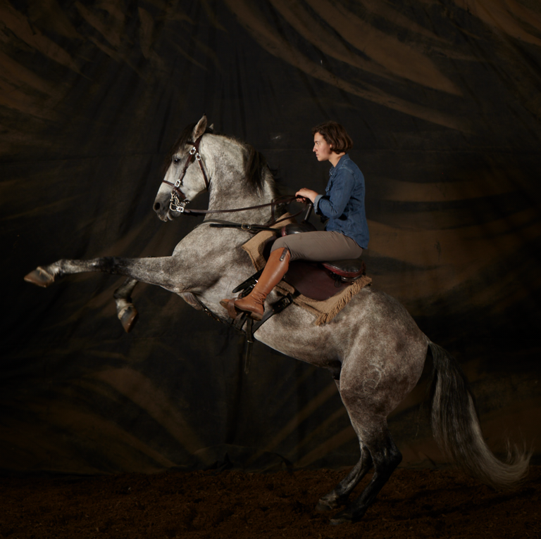The Game of Thrones Horsemaster, Camilla Naprous, exercises Moses, 2019, photo by Anastasia Taylor-Lind